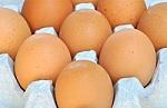 Eczema Egg Challenge